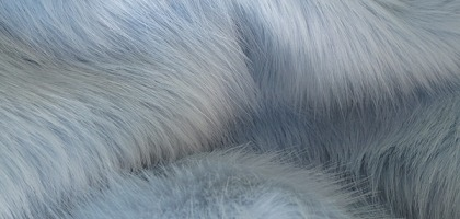 Faux Fur: A Fact File